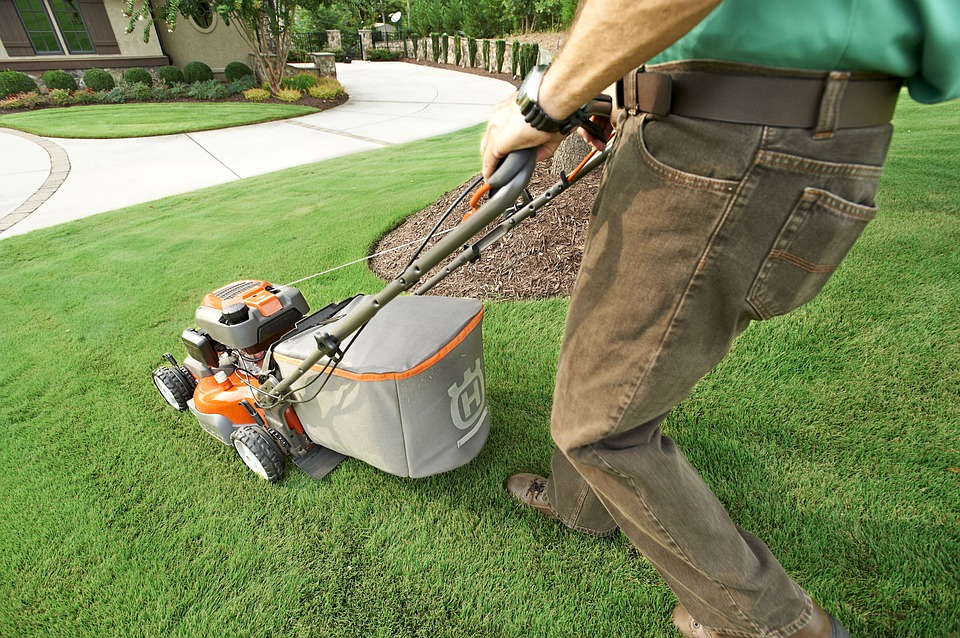 Lawn Care St. Augustine, Florida